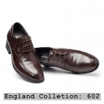 England Collection 602