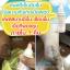 WheatFix Burn Spray 100ml thumbnail 3