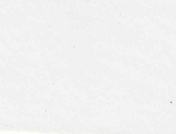 หนังเทียมลายเรียบ /0.7/54/50Y/ สีขาว
